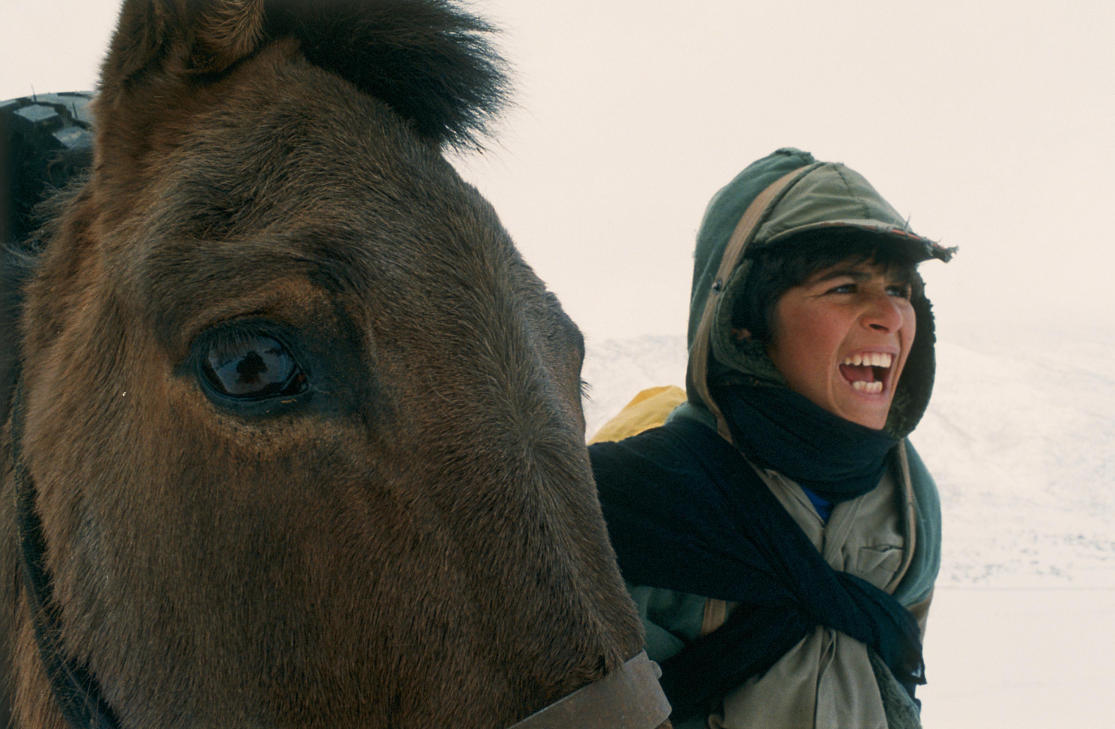 prochains v nements un temps pour l ivresse des chevaux j 39 ai vu un documentaire. Black Bedroom Furniture Sets. Home Design Ideas
